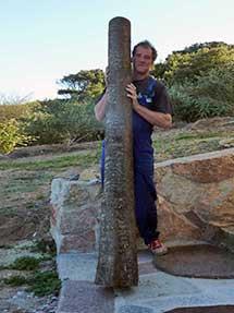 Ein großartiges Didge benötigt auch einen perfekt ausgewählten Baumstamm. A great Didge also needs a perfectly selected tree trunk.