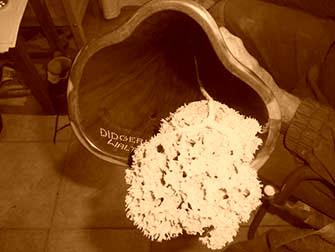 Einen weichen Schwamm durch das Didge ziehen. Consult a soft sponge trought the didge.