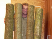 Hieraus entstehen neue Didgeridoos
